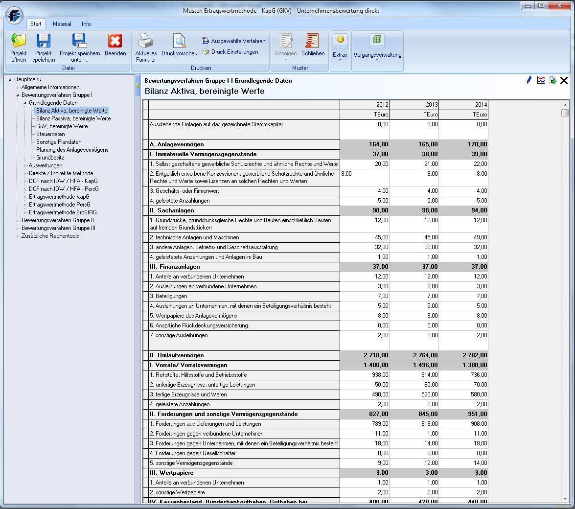 Software Unternehmensbewertung_Grundlegende-Daten-eingeben