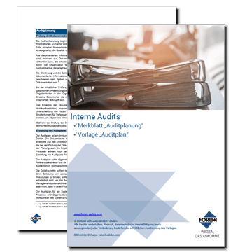Interne Audits: Auditplanung inkl. Vorlage