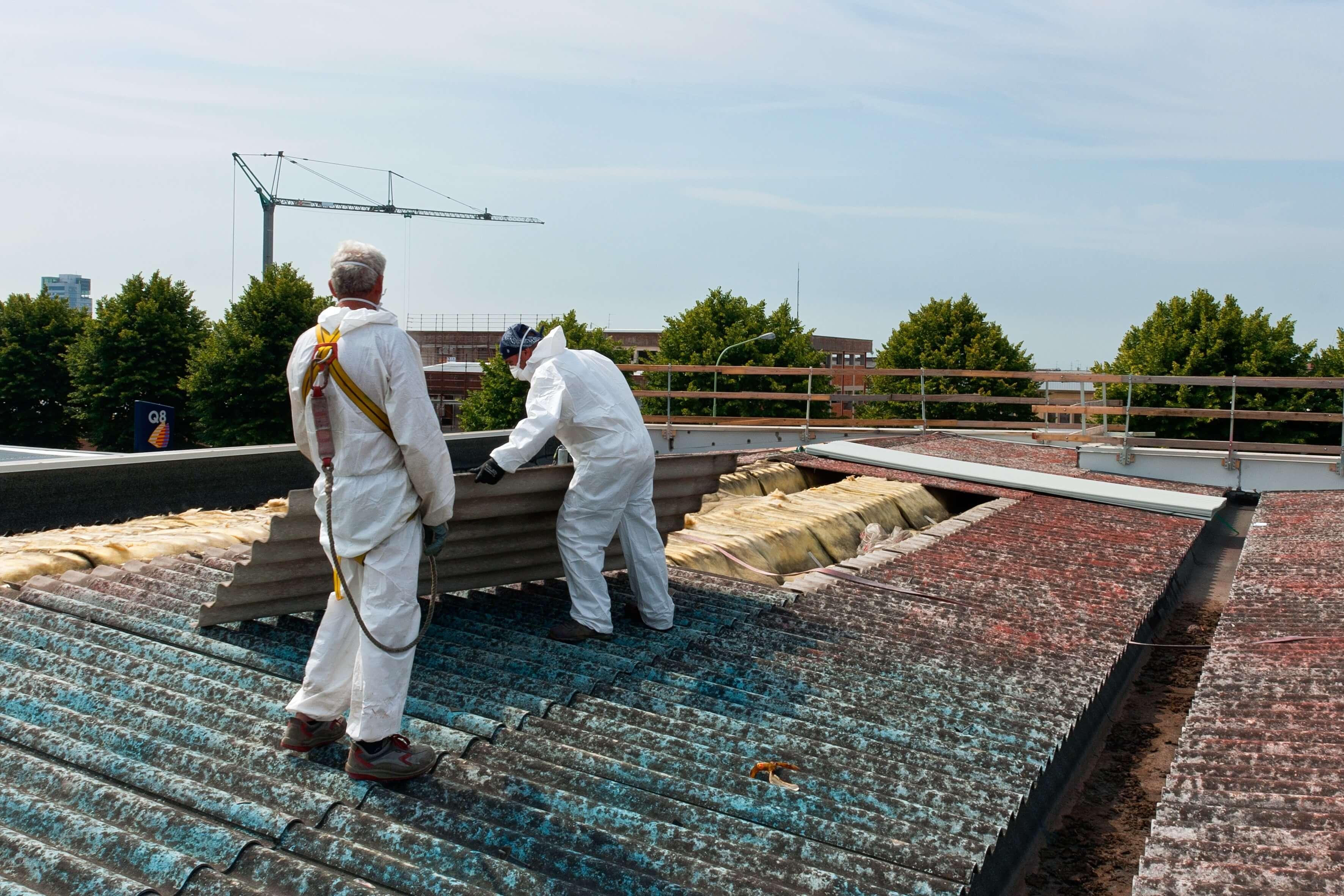 Asbest-Dachplatten-Forum-Verlag-Herkert-GmbH